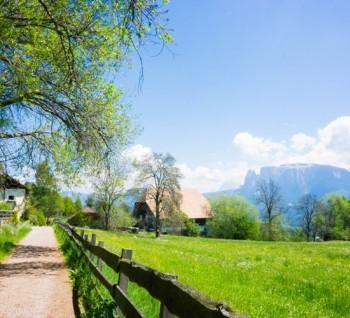 Мои любимые горы в Альто Адидже